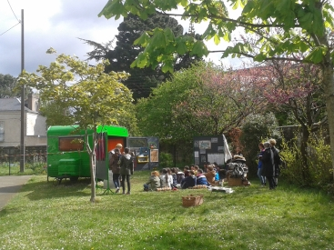 Jardin de la cour de l'école Fellonneau, Nantes (44), merci à tous les explorateurs élèves, professeurs, parents, ATSEM !