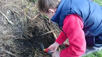 De la vie dans le compost !